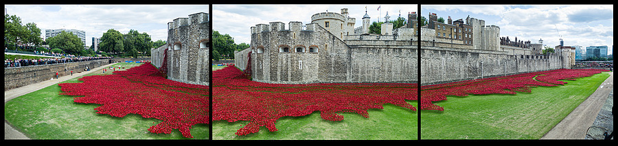 Tower of London - The Poppies | LEICA TRI-ELMAR 28-35-50MM F4 ASPH <br> Click image for more details, Click <b>X</b> on top right of image to close