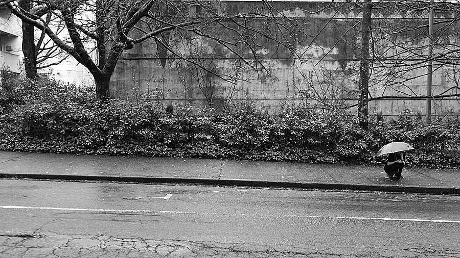 I'm texting in the rain | LEICA SUMMICRON 35MM F2 ASPH <br> Click image for more details, Click <b>X</b> on top right of image to close